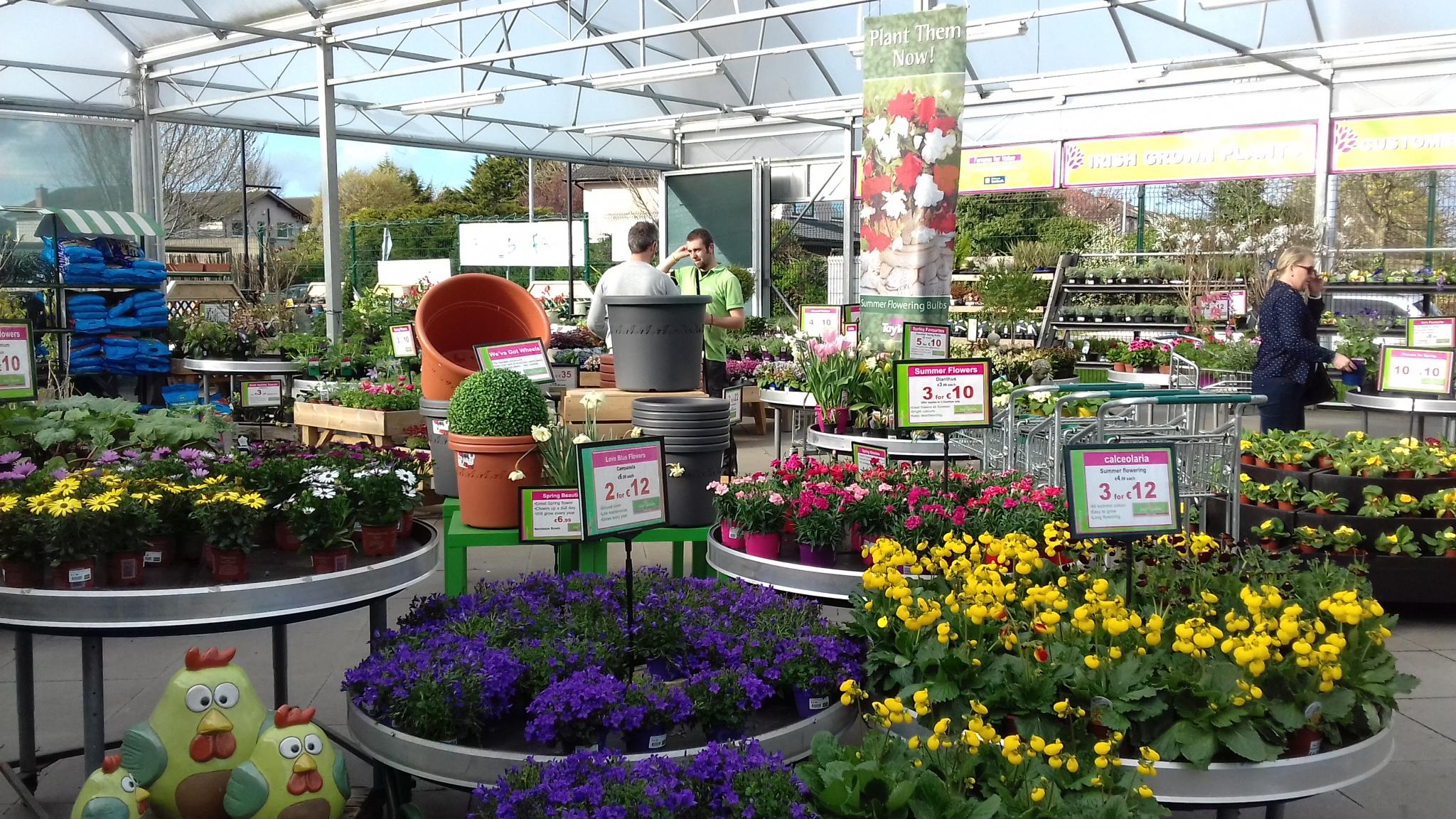 Garden Centre Dublin